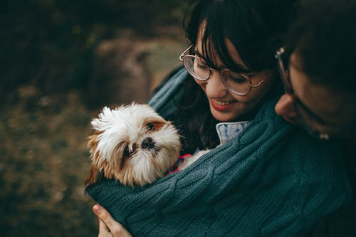 Emergency Care for Your Pet